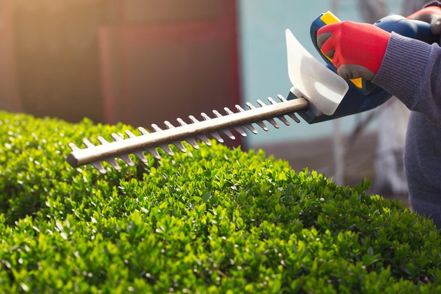 The 6 best cordless hedge trimmers 2021: Prepare your garden for spring with these long reach hedge trimmers
