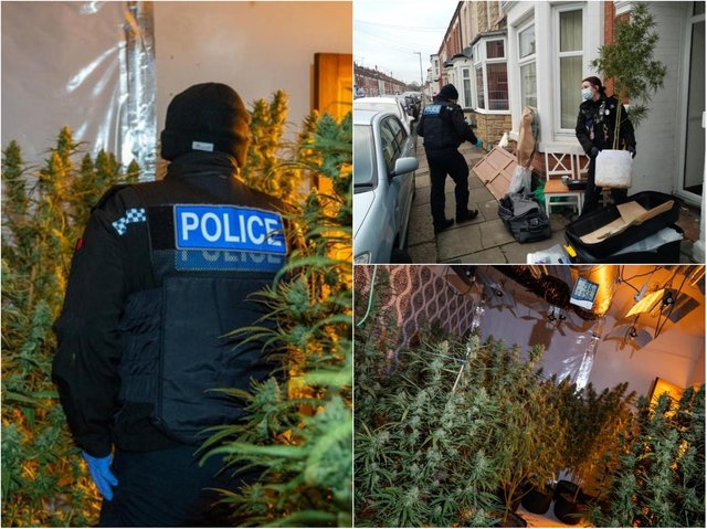 Laurant Hila was arrested in a police raid on a terraced house in Euston Road.