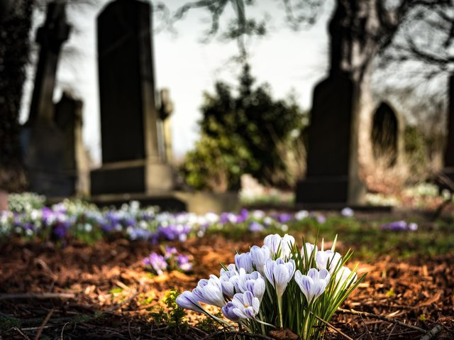 A grave was vandalised at the Towcester Road cemetery.