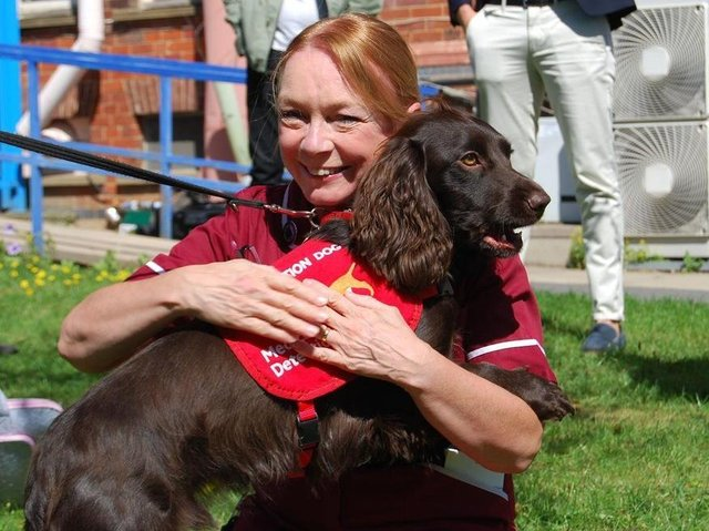 KGH Research Nurse Margaret Turns and Bramble during the bio-detection dogs' visit to Kettering last year