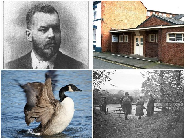 Northamptonshire Natural History Society. (Clockwise from top left) Former member Walter Drawbridge Crick, the Humfrey Rooms, three members at Badby Wood in 1935 after an all-night outing to observe wildlife, and a goose on Abington Park lake, taken by a member of the photography section