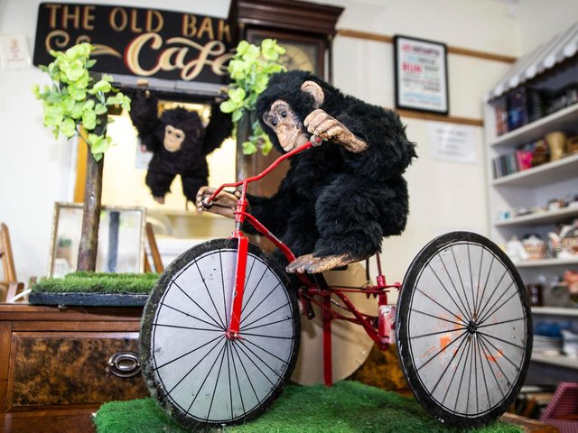 The Old Bakehouse Antique Centre is now home to two of the iconic performing monkeys loved by residents.