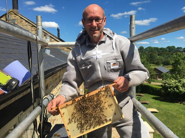 Owner of iX5 Pest Control, Matt O'Donnell, removing bees from a spa-hotel in Rushton.