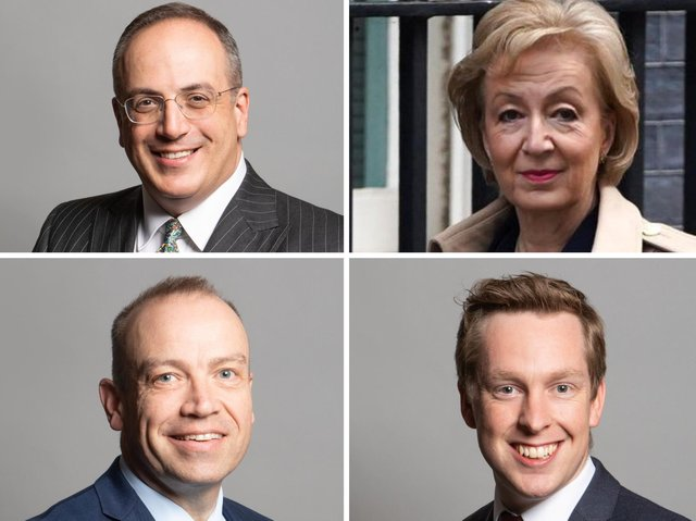 Tory MPs Michel Ellis, Andrea Leadsom, Chris Heaton-Harris and Tom Pursglove all backed the government