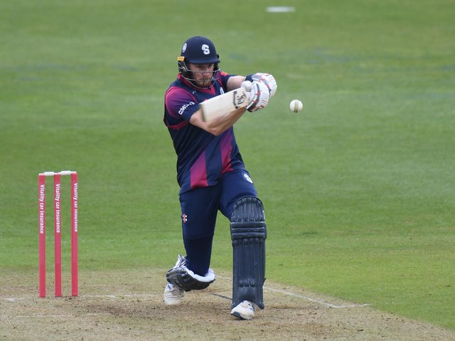Rob Keogh impressed with the bat but the Steelbacks fell well short against the Foxes